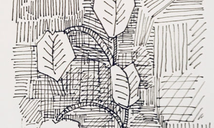 素描画 | Botanical room