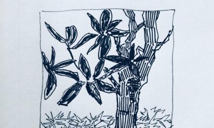drawing | TREE