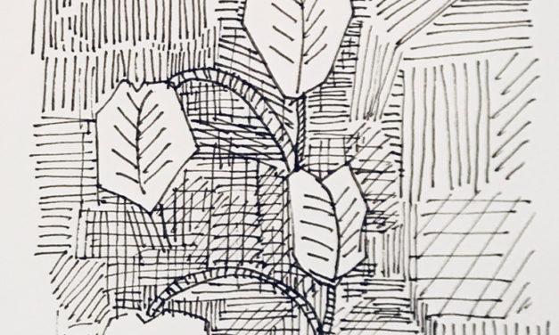 素描画 | Botanical room
