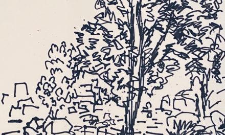 素描画 | FOREST